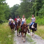 Horseback Riding English 1